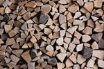 Hochwertige Brennstoffe sichern Zukunft der Holzenergie in Deutschland