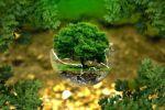 Petersberger Klimadialog 2018 legt Schwerpunkt auf Klimaschutz und Gerechtigkeit