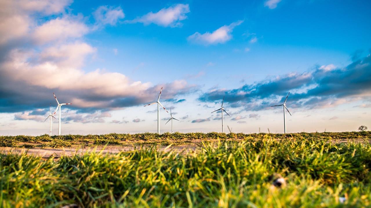 E-Fuels können wichtigen Beitrag zur Akzeptanz der Energiewende leisten