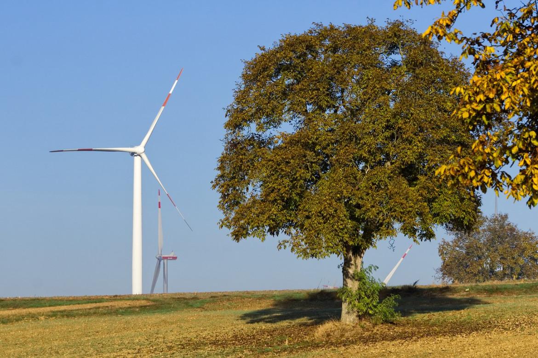 Der Klimaschutz-Unternehmen e.V. sucht neue Vorreiter