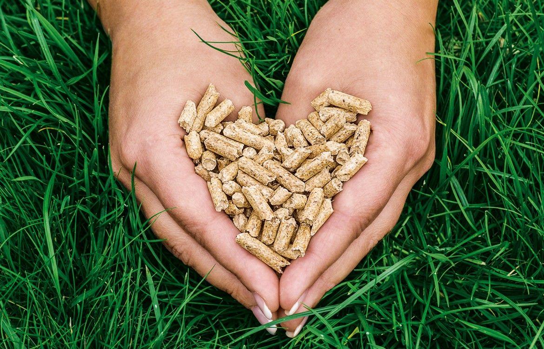 Nur 5 Prozent Mehrwertsteuer auf Presslinge: Sommerpreise für Holzpellets im Juli