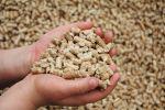 TÜV Rheinland: Mangelhafte Holzpellets können Heizungen beschädigen