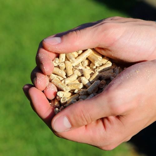Jetzt Vorräte auffüllen: Holzpellets im April günstiger