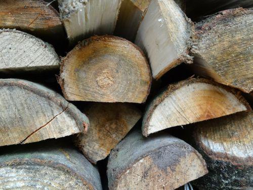 Brennholz optimal lagern