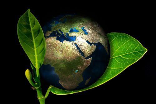 25. Weltklimakonferenz: 'Jetzt nach vorne schauen'
