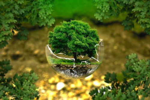 Zehn klimaaktive Kommunen gesucht!