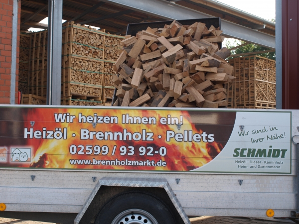 Kaminholz Buche trocken 25 cm lang