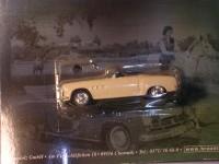 Modellauto W-313 / 1:43