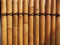 Bambus Sichtschutz, volles Rohr, 200 cm hoch, 90 cm breit, hell, Mindestbestellmenge: 5 Stück