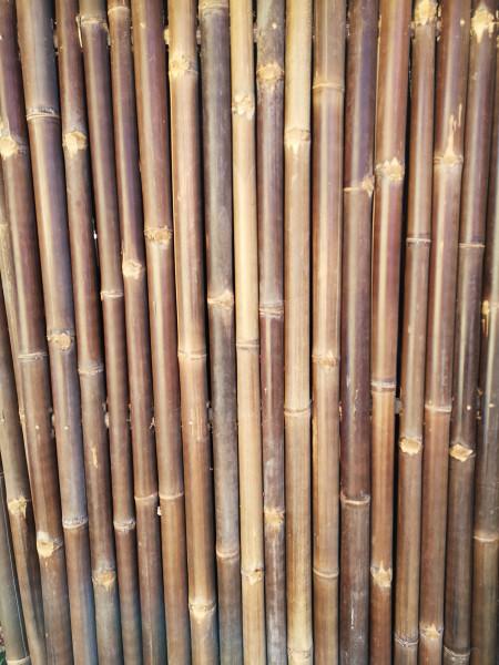 Bambus Sichtschutz, volles Rohr, 200 cm hoch, 90 cm breit, dunkel, Mindestbestellmenge: 5 Stück