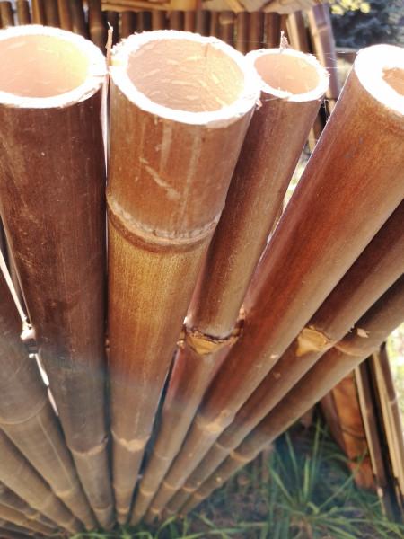 Bambus Sichtschutz volles Rohr 180, dunkel