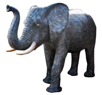 Elefant 250cm