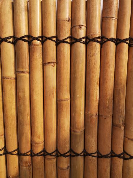 Bambus Sichtschutz, volles Rohr,  180 cm hoch, 90 cm breit, hell, Mindestbestellmenge: 5 Stück