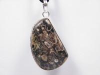 Dendriten-Opal Silberanhänger