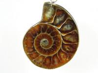 Ammoniten Anhänger in versilberter Fassung