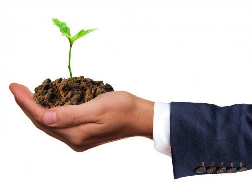 Wirtschaft kann Klimaschutz