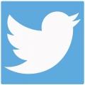 Twitter-Aktie auf Talfahrt: Google laut Medienberichten nicht interessiert